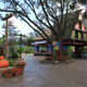 Busch Gardens Tampa 031
