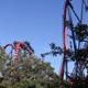 Busch Gardens Tampa 042