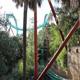Busch Gardens Tampa 052