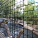 Busch Gardens Tampa 055