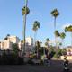 Busch Gardens Tampa 065