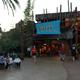 Busch Gardens Tampa 087