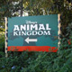 Disney's Animal Kingdom 002