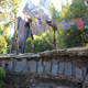 Disney's Animal Kingdom 012