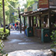Disney's Animal Kingdom 038