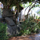 Disney's Animal Kingdom 040