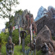 Disney's Animal Kingdom 058