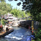 Disney's Animal Kingdom 074