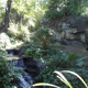 Disney's Animal Kingdom 084