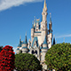 Magic Kingdom 007