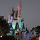Magic Kingdom 131