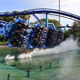 SeaWorld Orlando 014