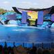 SeaWorld Orlando 016