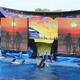 SeaWorld Orlando 020