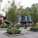 Universal Studios Florida 050