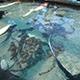 Aquarium of the Pacific 028