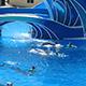 SeaWorld San Diego 052