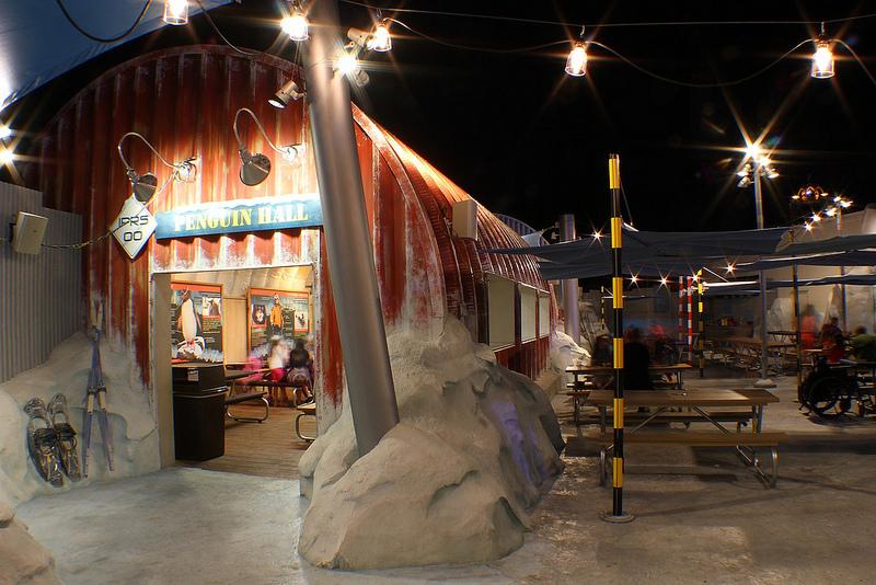 SeaWorld Orlando Un viaggio al Polo Sud in Florida