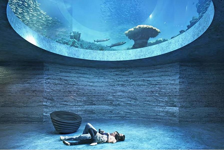 Acquario di Roma Sea Life - Expo L'acquario sotto il lago EUR, ripartono i lavori