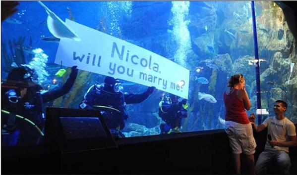 Wedding Proposal - Le 6 più belle proposte di nozze nei parchi divertimento