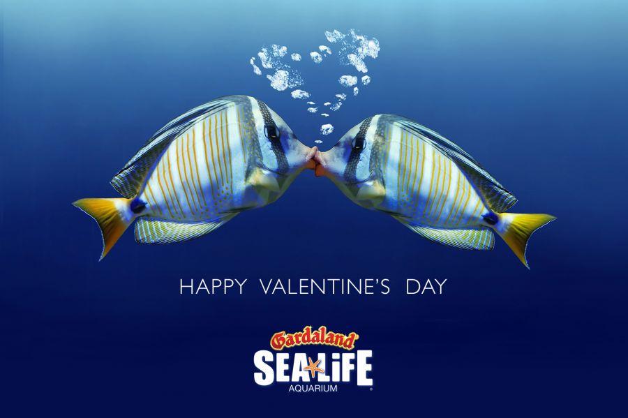 Gardaland Sea Life Aquarium Carnevale e San Valentino speciali