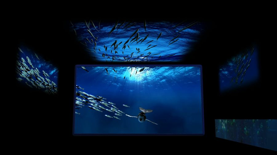 Acquario di Genova Il nuovo volto educativo targato Filmmaster