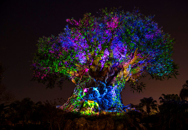 Disney's Animal Kingdom Rivers of Light anticipa l'arrivo di Pandora - The World of Avatar