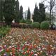 Parco Giardino Sigurtà 029
