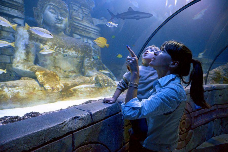 Sea Life Jesolo Le mamme gratis per la loro festa