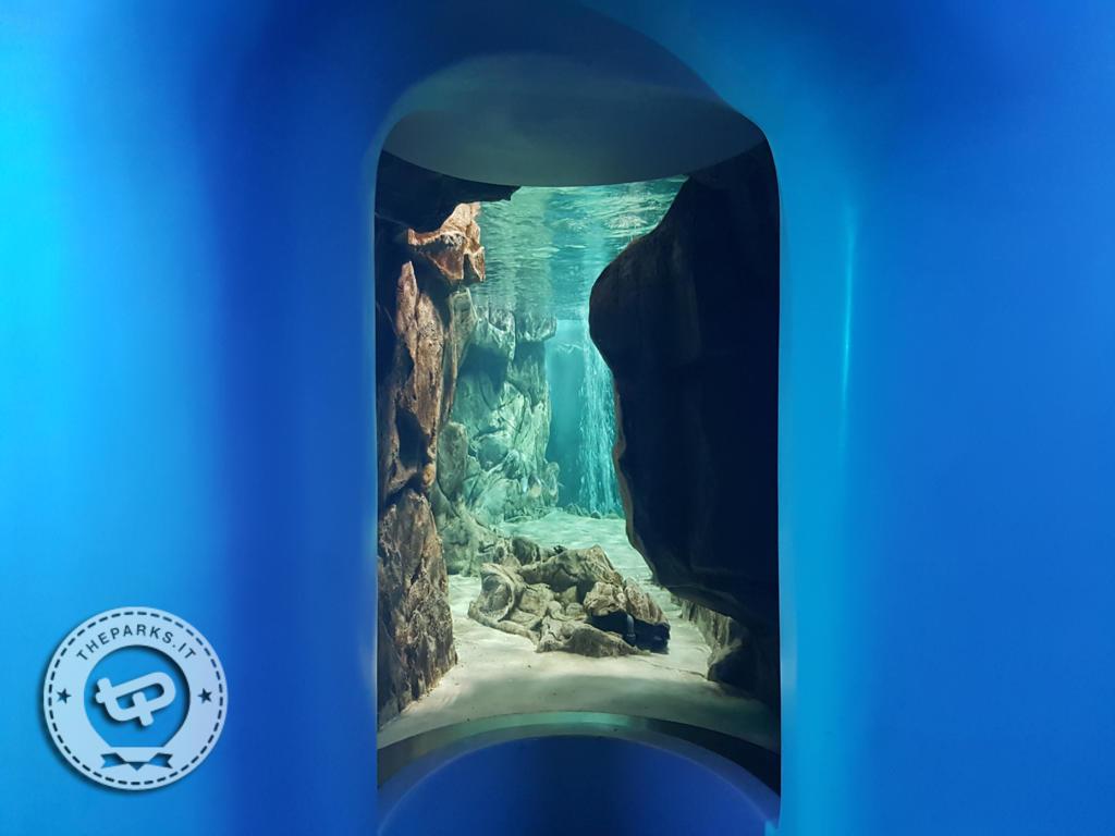 Acquario di Genova Esposizioni uniche tra febbraio e marzo