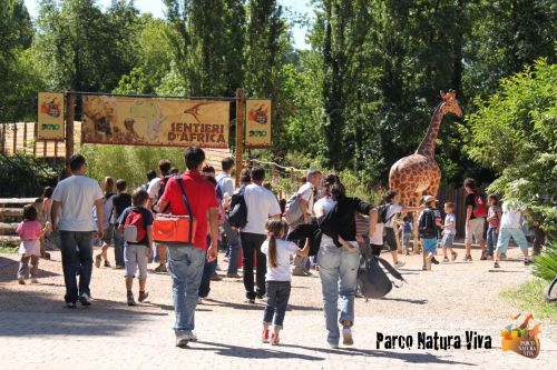 parco natura viva verona video tour - photo#24