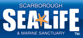 Scarborough Sea Life and Marine Sanctuary