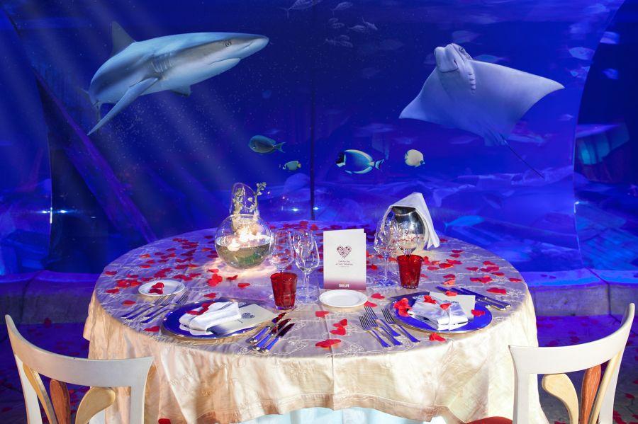 Gardaland Sea Life Aquarium Bambini gratis per carnevale e a San Valentino si cena sott'acqua