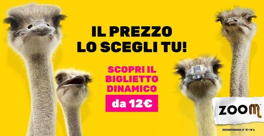 Bioparco Zoom Torino Come risparmiare fino al 50% con i biglietti dinamici