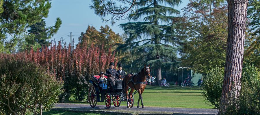 Parco Giardino Sigurtà Viaggi in omnibus e costumi d'epoca