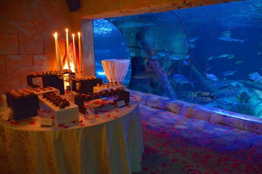 Gardaland Sea Life Aquarium Idee San Valentino: cena in acquario e promo 2x1