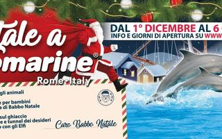 Zoomarine (Roma) - Per Natale 16 giorni di eventi!