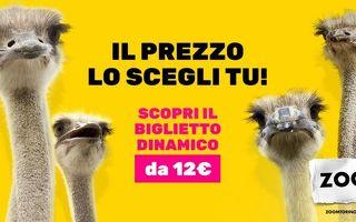 Bioparco Zoom Torino - Come risparmiare fino al 50% con i biglietti dinamici