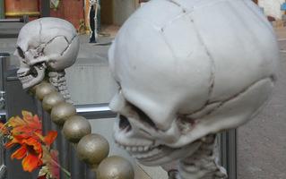 Miragica - La Terra dei Giganti - Tutto su Halloween